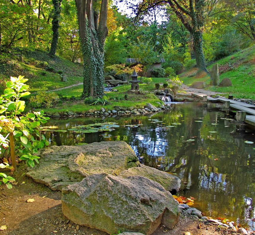 Botanička bašta 2
